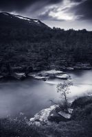 Abisko2 by cred1t