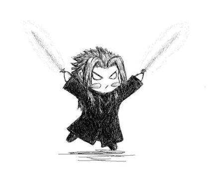 Organisation waha - Xemnas by cocohints