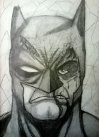 BatMess by Photographical