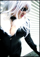 Black Cat by Rel-Rogue
