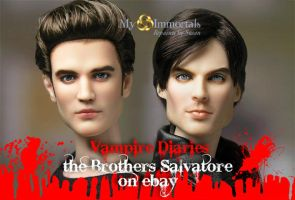 Vampire Diaries Salvatore Brothers on eBay NOW by my-immortals
