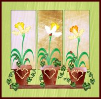 Potted Daffodils by rockgem