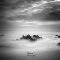 The Cancer of Time V by damien-c-photography