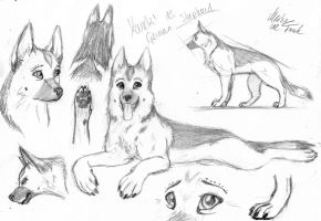 Yunaki German Shepherd by YunakiDraw