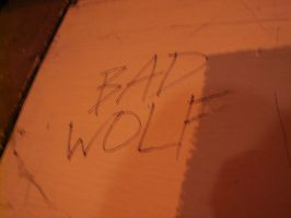 The Words Bad Wolf Seem To Follow Us by eve-tau42