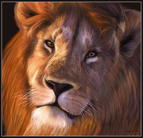 Leo the Lion by juggsy