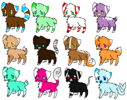 Kitty Adoptables! *CLOSED* by SuperCrazyRainbows