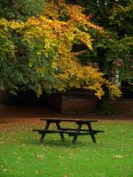 Autum bench 2 by KerrieLBrown