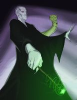voldemort by envidia14