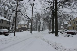 Blizzard of 2013 by TheBuggynater