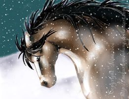 Christmas horse in snow by Nakuru-Nebelung