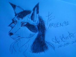 For my buddy ARVEN92 by SigmaPeculiar