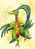 Grovyle - Hoenn Draw 'em all challenge