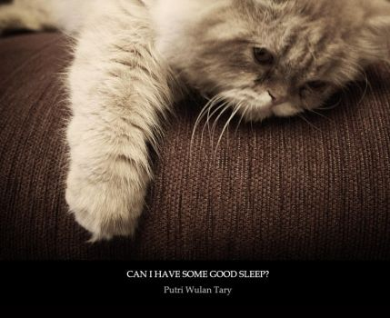 Can I Have Some Good Sleep by poetry2capullet