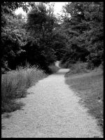 Long gravel path to where by bezman