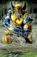 Wolverine by GudFit