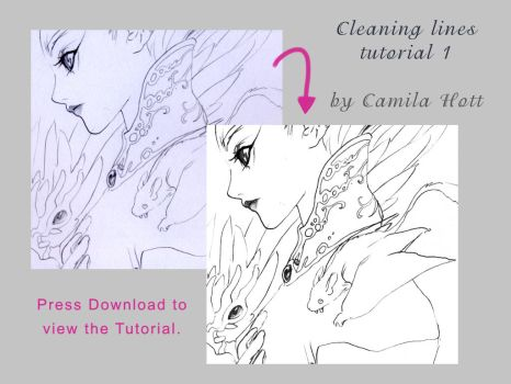 cleaning lines tutorial 1 by C4mi