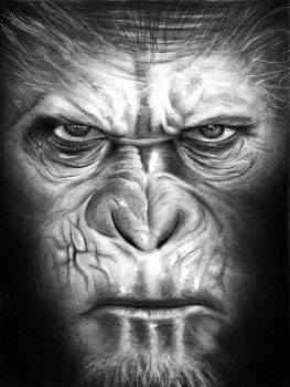 Caesar | Dawn of the Planet of the Apes by HarryMichael