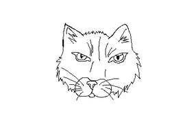 uncolored cat face e.e by SwiftyNifty