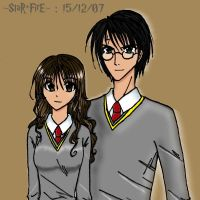 Hermione and Harry by starfire02949