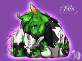 Fala headshot by Leadmare