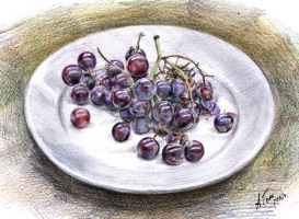 Grapes by ANDREYGORKOVENKO