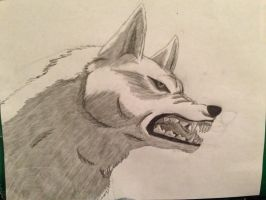 Kiba again by KillerWolfPack