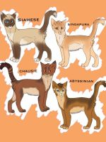.: Free :. Group adoptables .: Plainesclan :. by TheClansOf-TheValley