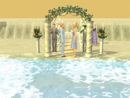 Married on the Beach...... by pacman8