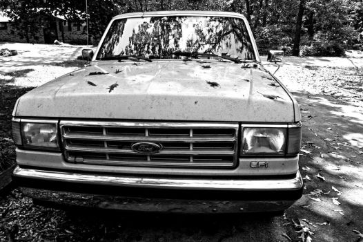 1988 Ford F150 Pick-up Truck by alimuse