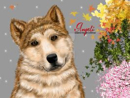 Hachiko Dog by Angelii-D