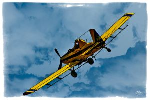 Crop Duster by DleeKirby