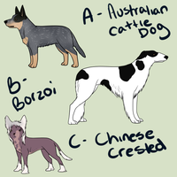 A-C Adopts by Alcemistnv