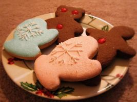 Christmas is Coming Cookies by Feohria