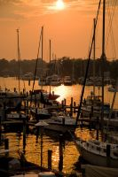Annapolis Marina by sneekbox