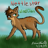 Nettlestar by animeten10
