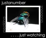 Justanumber id4 by justanumber