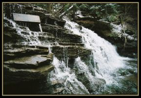 First Waterfall 3 by Donohue