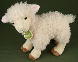 Little Lamb IV by IQuitCountingStock
