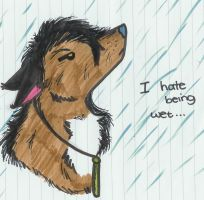 I Hate The Wet by RouxWolf