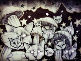 Catshrooms by StaceyQuay