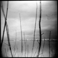 Holga 57 by xxlogre