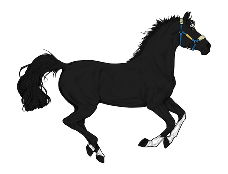 Horse adopt 1 by LoveOfTheHeart69