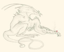 -:The Dragon and the Rabbit:- by Mythrime