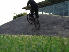 Wallride... by henry661