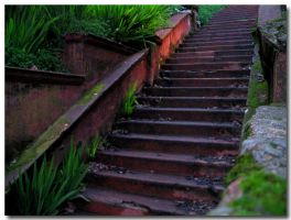 Mossy Stairs by fl8us