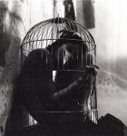 Caged by charseeb