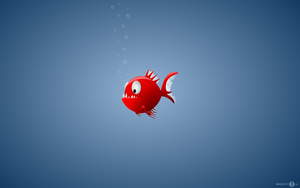 piranha widescreen by ducatart