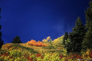 Hill of Color by mjohanson