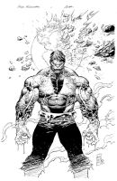 Silvestri Hulk cover inks by antalas